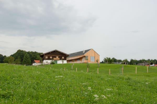 holzhaus, architekt, haus, bauernhof, umbau, salzburg, landleben, loft, architektur